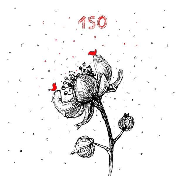 Dovanų kuponas 150 Eur, YURGA
